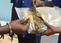 Louga : une femme handicapée arrêtée en possession de 3 kg de chanvre indien